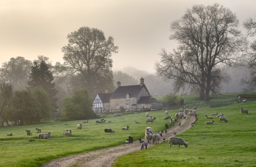 Advice for farmers on protecting Agricultural Property Relief