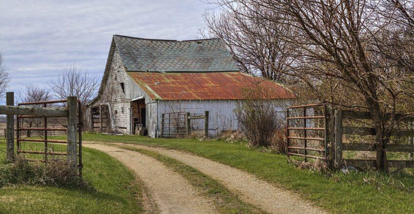 Understanding barriers to farm diversification